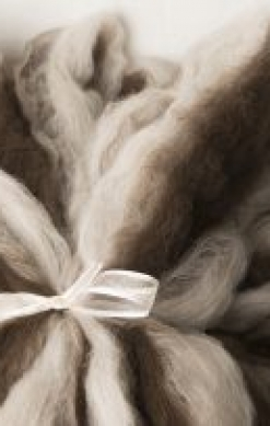 Lovely Natural Hand Pulled Roving (180426)